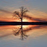Вечернее зеркало :: Laimonas S
