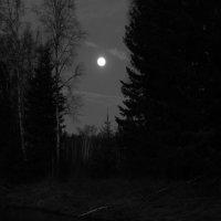 луна :: Вадим
