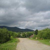 Карпаты. :: Алина Тазова
