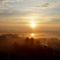 Солнцем разбужена... :: Людмила Алексеева