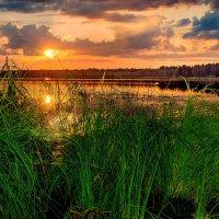 Александр Остроумов - Закат на озере Селигер