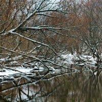 На исходе зимы. :: Edward J.Berelet