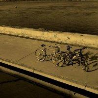 Велосипеды :: Павел Зюзин