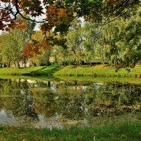 В парке :: ирина )))