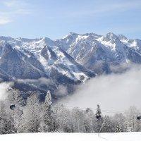 Горы в снегу. :: Larisa Gavlovskaya