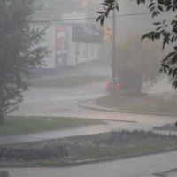 дождь :: Sergey.Frolov Frolov