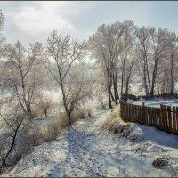 За околицей. Зимние зарисовки. :: Евгений Герасименко