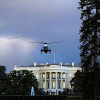 White House, Washington D.S. :: Ирина Бастырева