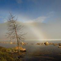 Белые радуги Ильчира :: Герман Евсеев