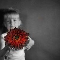 Девочка с цветком :: Дмитрий Догадкин