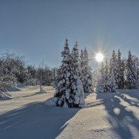 Мороз и солнце!!!!! :: Олег