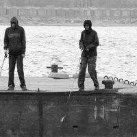 Рыбаки. :: сергей лебедев