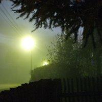 Ночной туман :: Елена Артамонова
