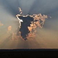солнечные учи... :: Inna Kharisova