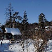Зима :: Алексей Golovchenko