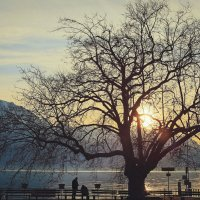 Путешествие в Швейцарию :: Татьяна Бирюкова