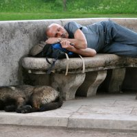 Летний сон :: Владимир Клюев