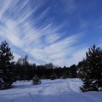 зимний пейзаж :: Дмитрий .