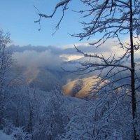 И такие бывали зимы. :: Larisa Gavlovskaya