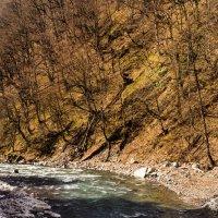 Весна в горах :: Виола Мясникова