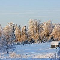Зимний пейзаж... :: Александр Никитинский