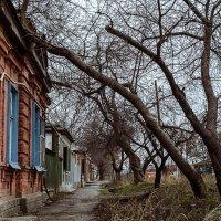 Таганрожские улицы :: Константин Бобинский