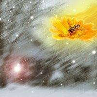 Сегодня провожаем зиму! Солнышко под мухой в сени к нам летит...))) :: Сергей В. Комаров