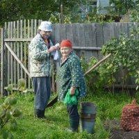 Урожай убран :: Валерий Талашов