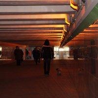 Лучше подумать о тёплом и светлом... :: Ирина Данилова
