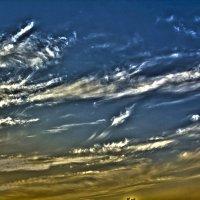 Небо :: Андрей Баськов
