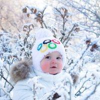 Олимпиец на прогулке ) :: Юлия Зуева