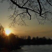 Вечер над озером :: Юрий Цыплятников