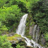 водопад :: мария шведа