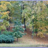 Осенняя дорожка у озера в парке :: Владимир Гилясев