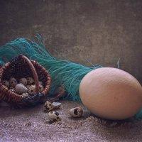 Пролетая над гнездом кукушки... :: Ирина Приходько