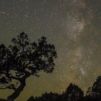Звездная ночь.... :: Андрей Артемьев