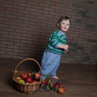 Лёвка с яблоками :: Алёна Райн