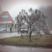 Туман в Знаменке :: Алла Рыженко