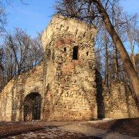 Башня-руина в Царицино :: Михаил Морин