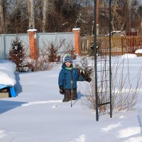 Всё в снегу. :: Олег Афанасьевич Сергеев