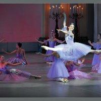 Концерт-3 :: Андрей Фиронов