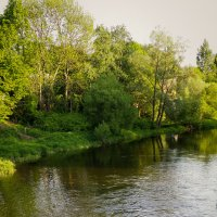 фото :: Тим Нифталиев