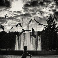 Urbanity :: Evgeniy Grishin