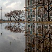 Отражение в Разводном саду. :: Valeriy Piterskiy