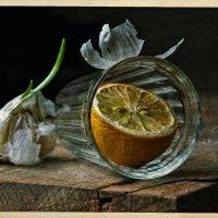 Стакан, лимон :: Ольга Мальцева