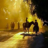 Пыльный вечер :: Алексей Окунеев