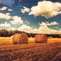 Haystacks :: Evgeniy Grishin