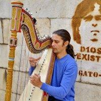 Музыкант и статист - музыка всегда на двоих. :: Виталий Половинко