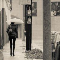 Дождик :: Valera Kozlov