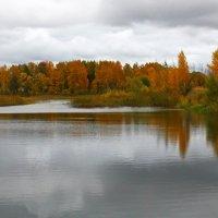 О чем задумалась ты, осень? :: Наталья Цветкова